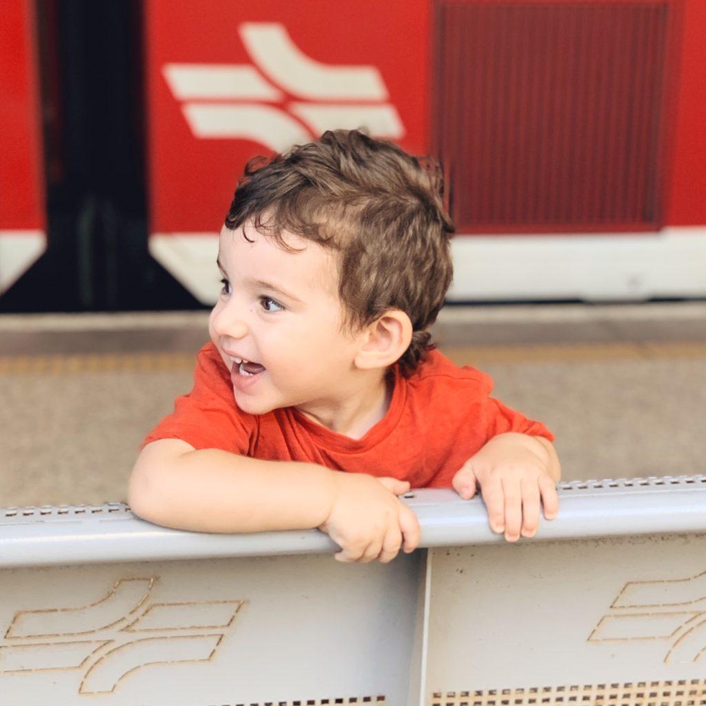 איילה cv השוקעת בחן עם ערכת יצירה של חנות מריונטה ברכבת ישראל